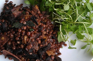 Lentils with Mushroom & Bacon